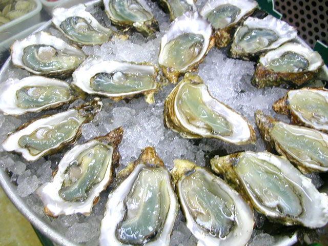 Oysters open