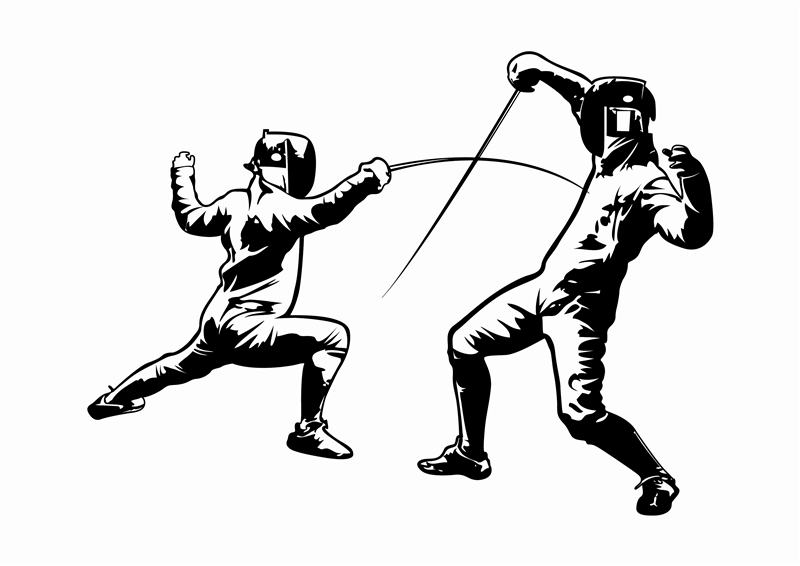 Image result for fencing art