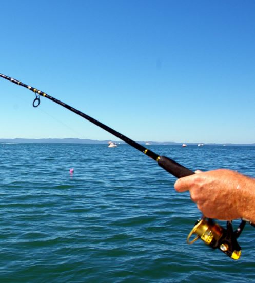 get a free one day ct fishing license on saturday