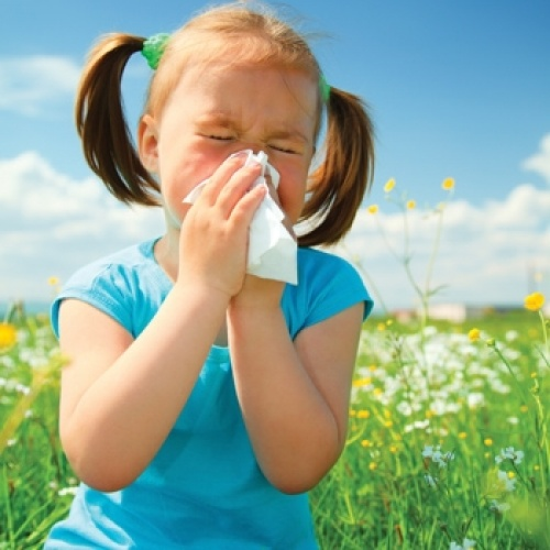 Allergy Relief For Your Child