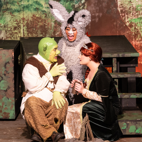 Grotesque Shrek Is A Monster Success At Musicals At Richter In Danbury