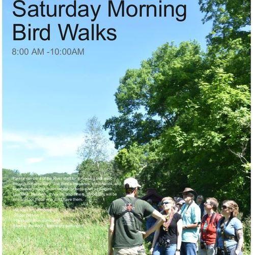 Southbury Happenings: Bird Walks, Music And Books