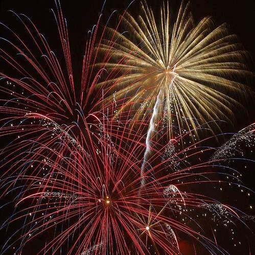 Firework 1627332981.
