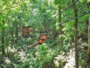 Riding down on a zip line, stretching across canyons and in between treetops, the exhilarating adventure of zip lining down the mountainside begins.