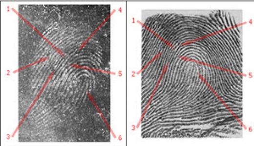 Cold Case Solved Using Fingerprints