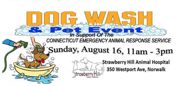 Local dog wash to benefit animals in need solutioingenieria Images