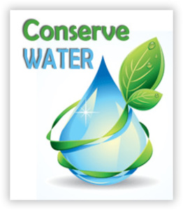 Help on essay nature conservation for class 8