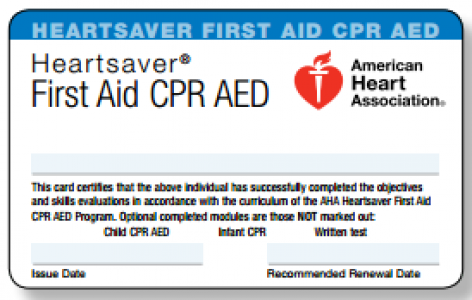 Cpr Certification At Westcehster Mma Fit