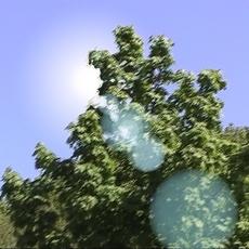 LensFlare for Shake 1.1