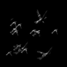 Flock for Shake 1.0