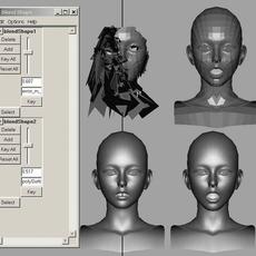 Reconstruct Mesh Tool for Maya 1.0 (maya plugin)