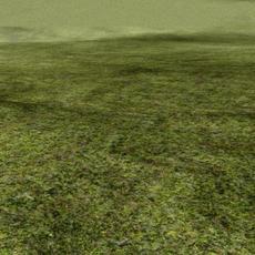 Photoreal_Shader_Grass for Maya 7.0.0