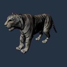 Tiger for Maya 1.0.0