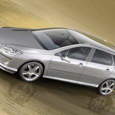 Peugeot 407 Estate 3D Model