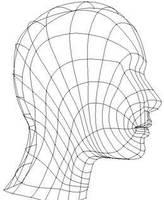 Modeling a POLYGON Head