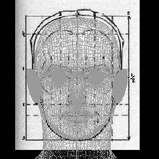 Male Head 01 3D Model