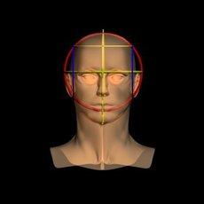 Male Head 01X 3D Model