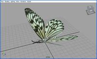 Instancers (Flying butterflies)