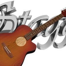 Stagg Guitar 3D Model