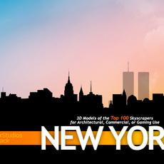 TowerPack New York 3D Model