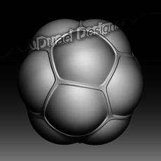 Cells 3D Model