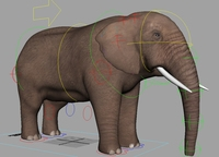 Elephant for Maya 2.0.0