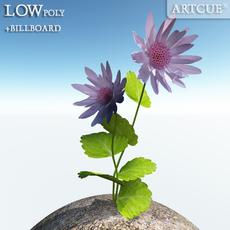 flower 007 3D Model