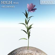 flower 012 3D Model