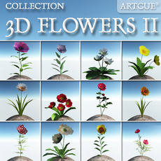 FLOWER COLLECTION 02 3D Model