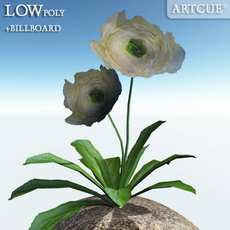 flower 023 3D Model