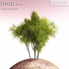 shrub 003 3D Model