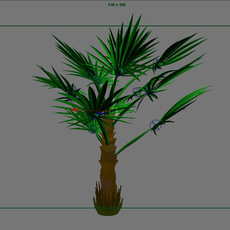 Windmill Palm Tree with full animation control 3D Model