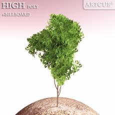 shrub 016 3D Model