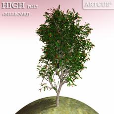 tree 007 3D Model