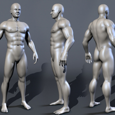 bodybuilder male 3D Model