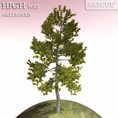 tree 013 3D Model
