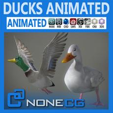 Animated Ducks