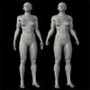01 32 43 809 bodytest standup strongly 01 r.comp.1 4