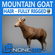 Rigged Mountain Goat 3D Model