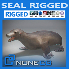 Rigged Seal