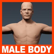 Human Male Body - Anatomy 3D Model