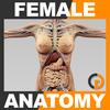 02 30 59 283 femanatomy th001 4
