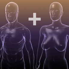 Male And Female Anatomy: X-Ray transparent bodies 3D Model
