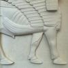 02 53 17 336 assyrian 5 4