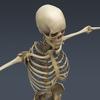 03 03 29 51 skeletonmayarigged th010 4