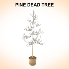 Dead Pines 3D Model