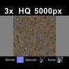 03 12 51 760 leaves on sand1 tex 4