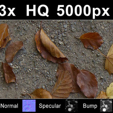 3x Leaves on Sand 1 - High Res