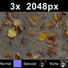 3x Leaves on Sand 1