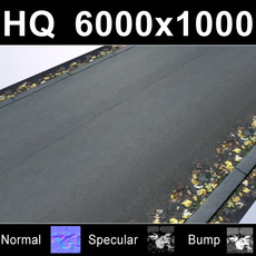 Road 1 with Autumn Leaves - High Res